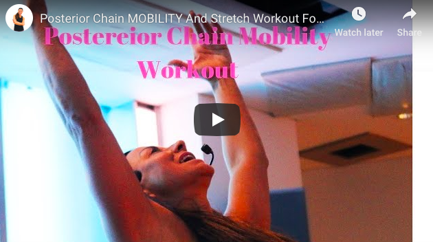 FITNESS PILATES MOBILITY WORKOUT